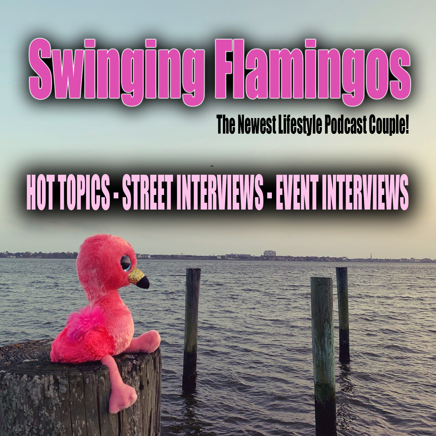 Swinging Flamingos